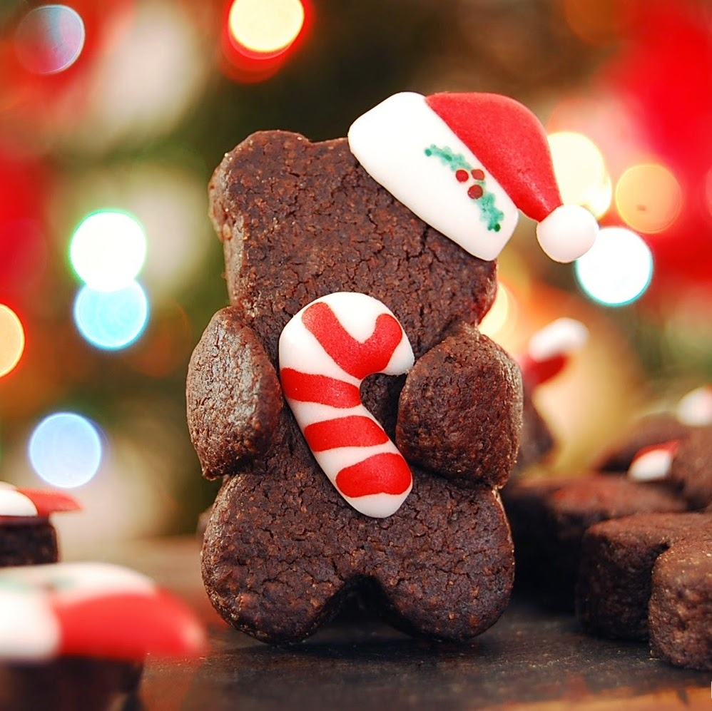 http://www.cutesimplestuff.com/2014/11/christmas-hugging-bear-decorated-cookies.html