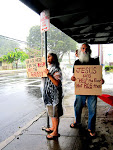 Occupy Hilo