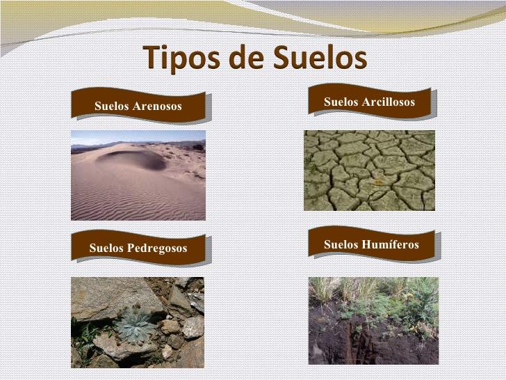 El suelo for Tipo de suelo 1