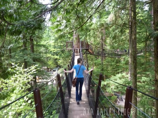 Capilano Suspension Bridge Park, Treetops Adventure