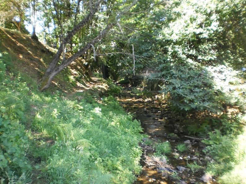 Zona Verde ao lado do riacho