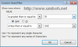 Custom Autofilter database excel