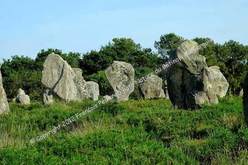 les pierres levées