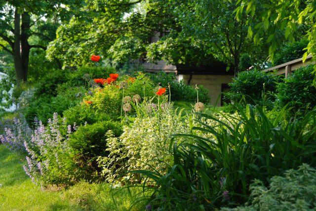 Our Front Walk Garden