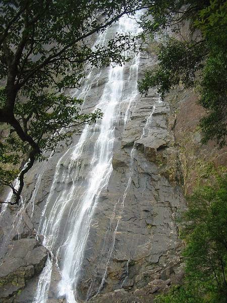 thác đỗ quyên Núi Bạch Mã