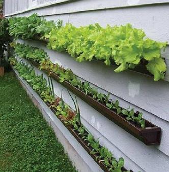 Garden Design Garden Design with Get Growing Organic Gardening