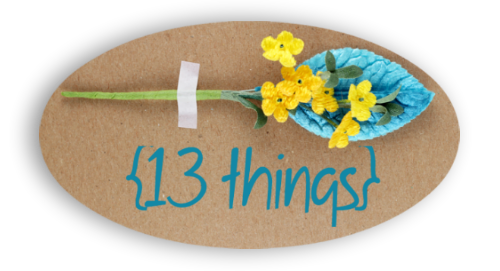 13 Things Logo