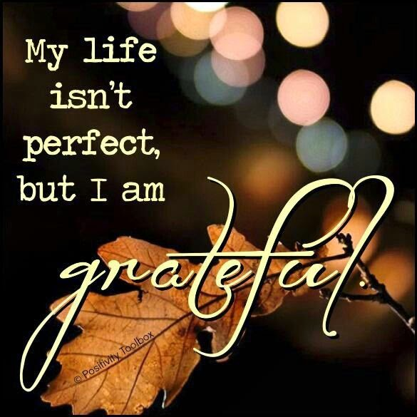 """My life isn't perfect, but I am grateful."" ~ Unknown; Picture of a brown leaf. PositivityToolbox"