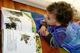 Llibre infantil En Calvin no sap volar