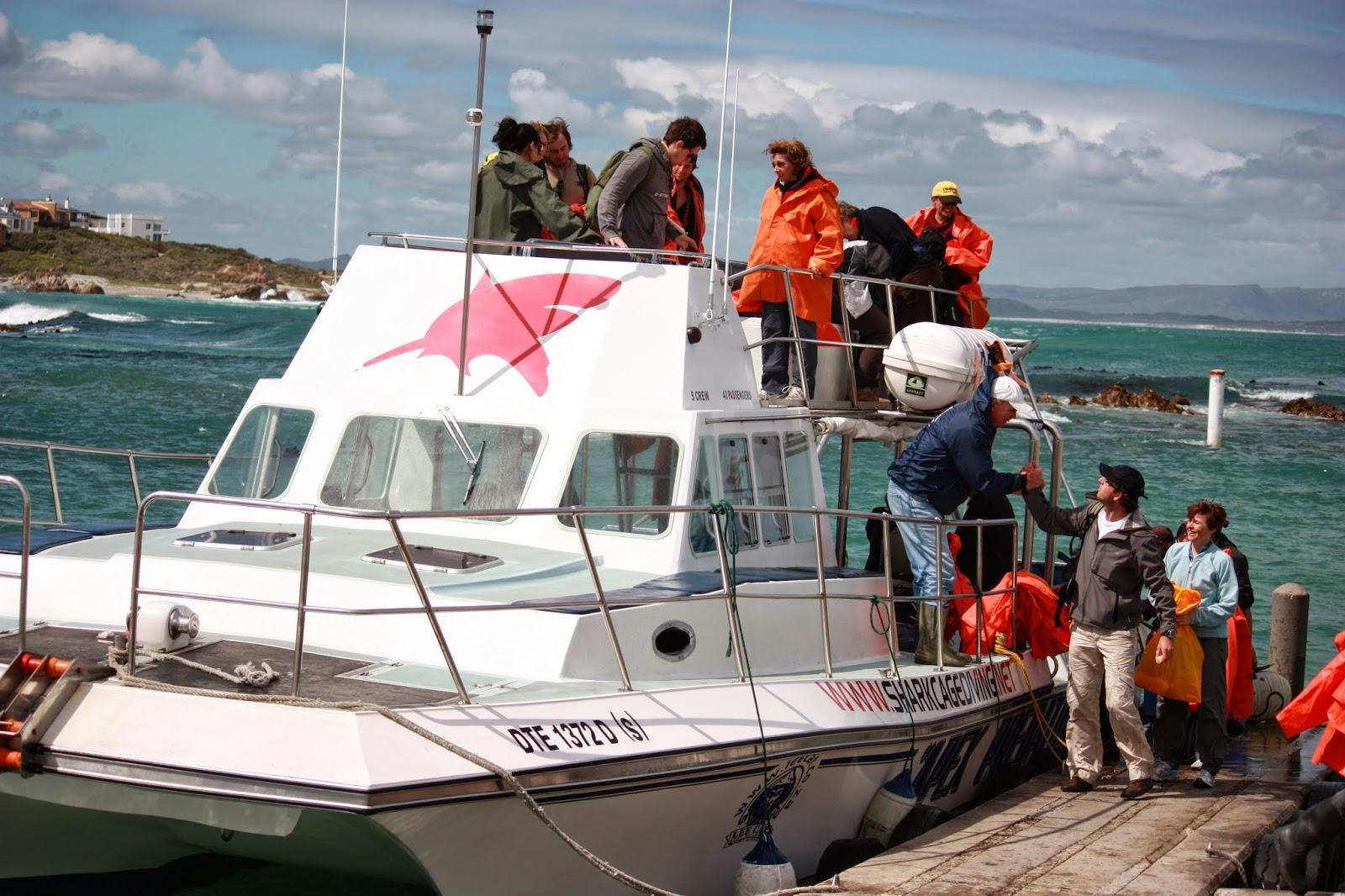 De_boot_naar_de witte_haai