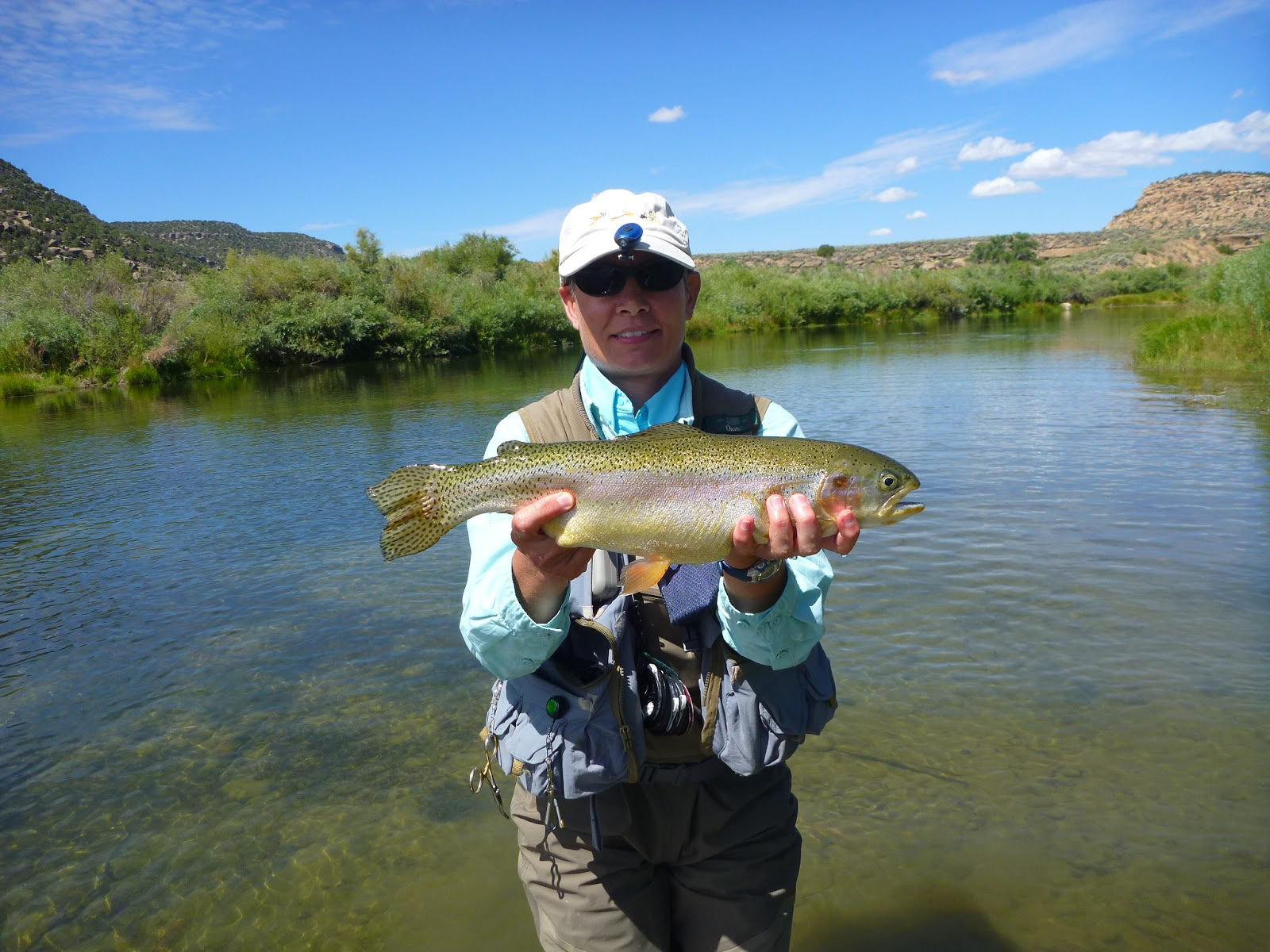 The san juan river fly fishing report pagosa springs co for Best fishing in colorado