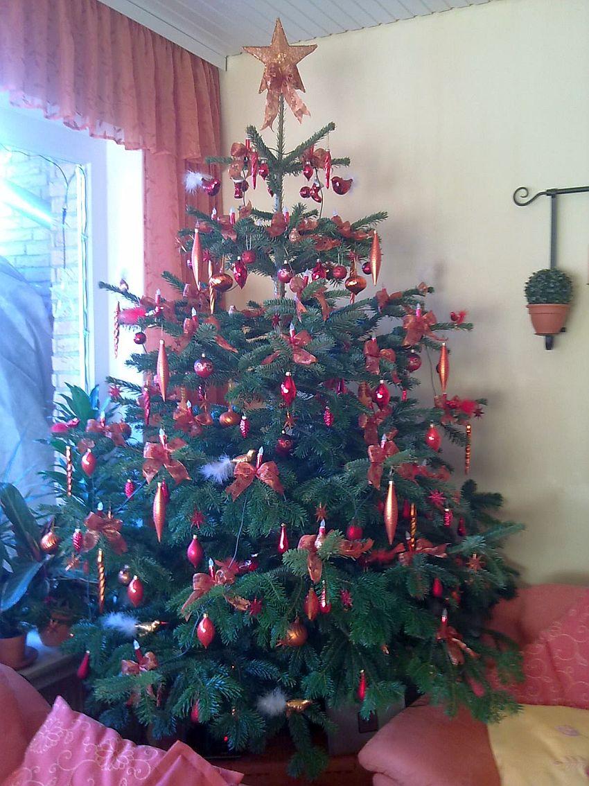 svanvithe wer hat den sch nsten weihnachtsbaum 2012. Black Bedroom Furniture Sets. Home Design Ideas