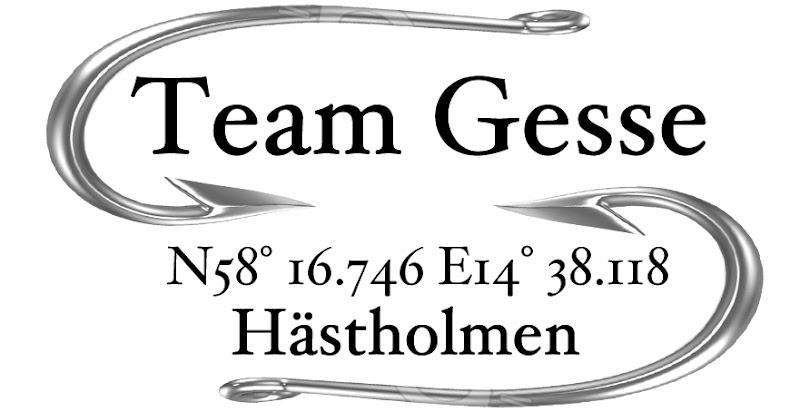 Team Gesse