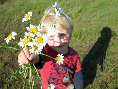 boy with big daisy flowers
