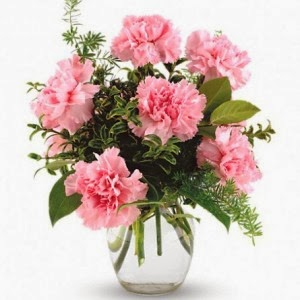 http://www.floristvancouver.com/shop/lovely-carnations-vased/