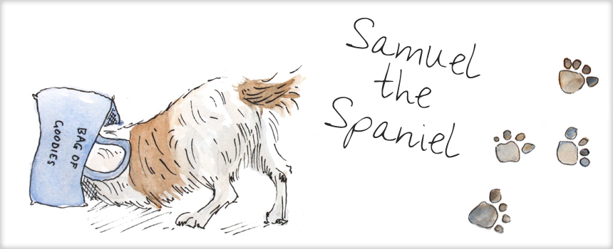 The Adventures of Samuel the Spaniel
