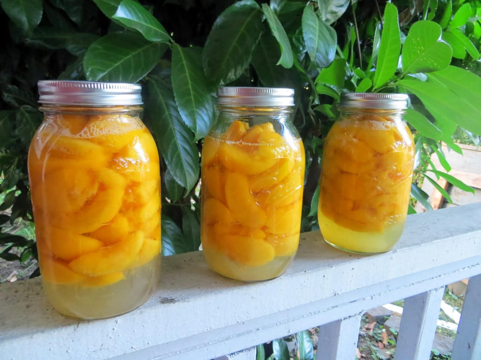 Canning & Food Preservation
