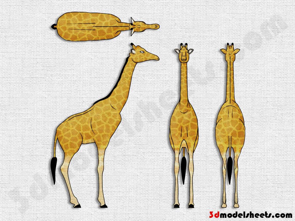 High resolution seamless textures free animal blueprints model sheets giraffe blueprint malvernweather Image collections