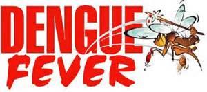 Dengue_Fever_Krabi_Thailand_2015