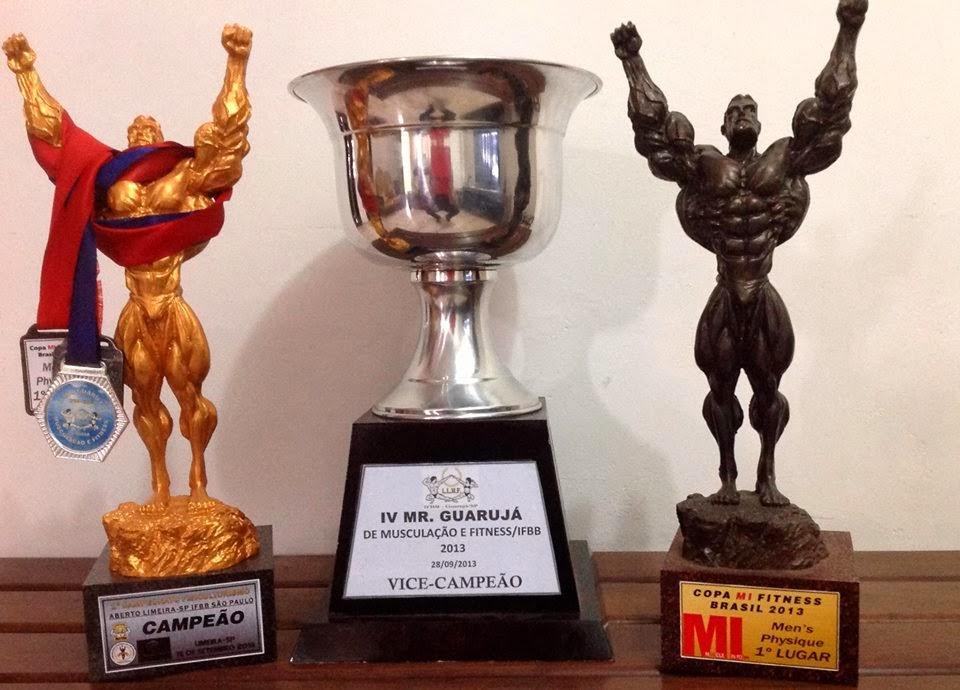 Troféus e medalhas conquistados por Diego em 2013 Foto: Reprodução