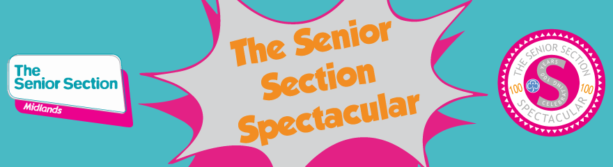 Girlguiding Midlands Senior Section Spectactular