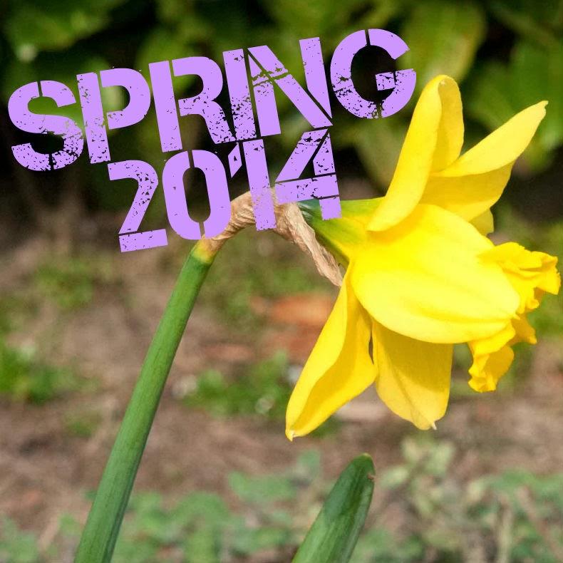 narcis voorjaar lente spring 2014