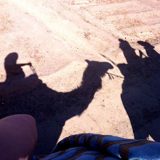 Camel ride at the palmery
