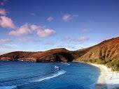 Praia e Falésia