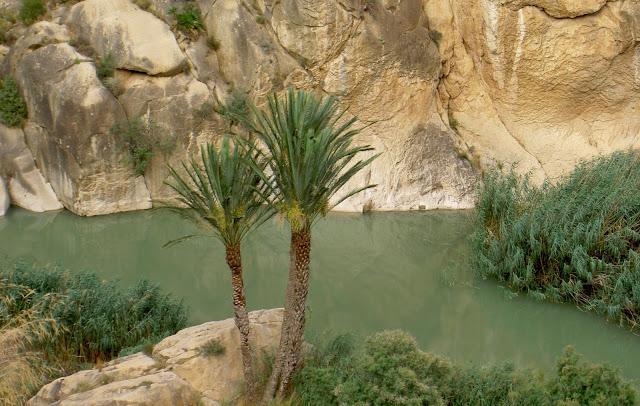 Valle Ricote