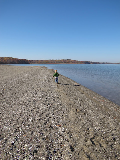 Porter Running at West Branch State Park