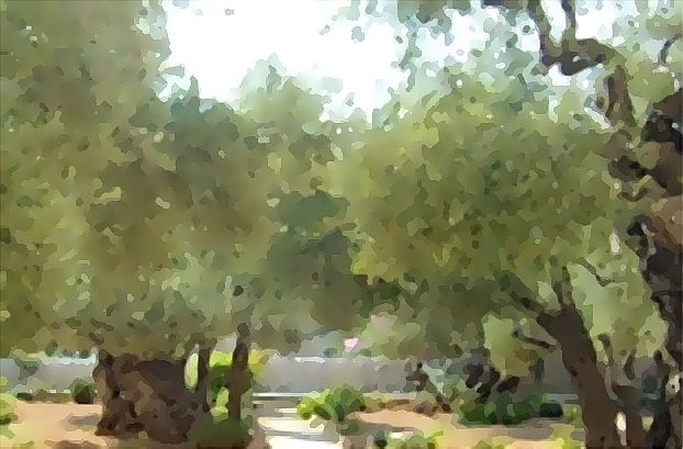 Faithful Resources for all Christian: 3 Hours at Gethsemane ...