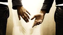 amor companheirismo sensibilidade
