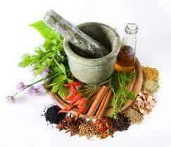 tips belanja obat herbal