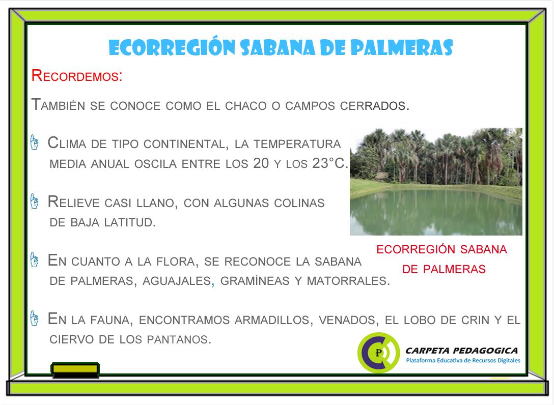 Ecorregión sabana de palmeras