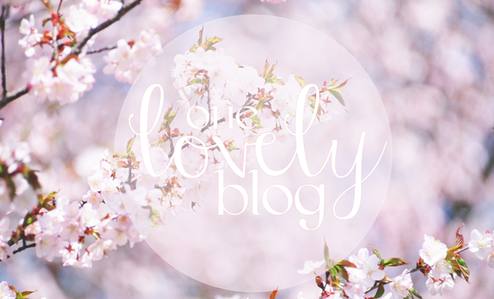 TAG: One Lovely Blog