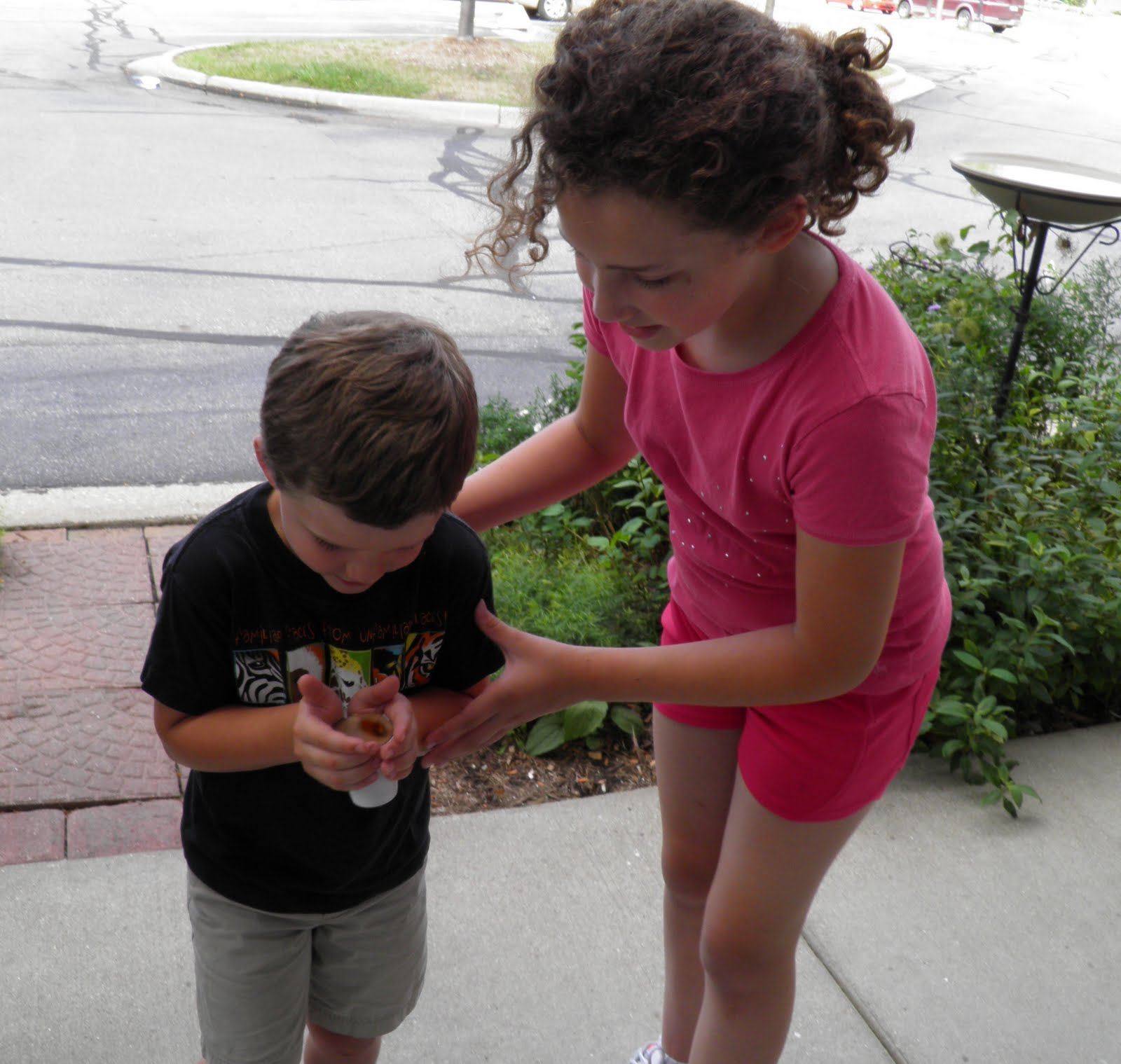 Wild birds unlimited what does the stripes on a woolly bear worm anna helps evan with his woolly biocorpaavc Choice Image