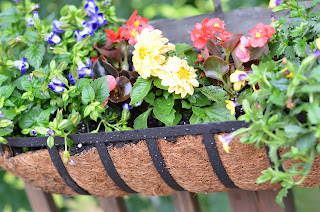 CobraCo Canterbury Horse Trough planter
