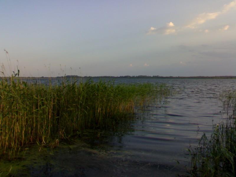 рыбалка на плюссе псковская область