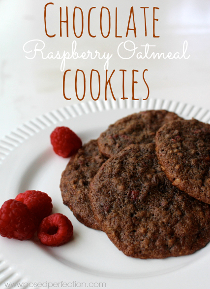 Posed Perfection: Chocolate Raspberry Oatmeal Cookies ~ Cookie of the ...