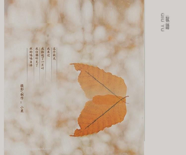 Chiếc lá mùa thu 21