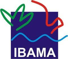 image|reabertura-concurso-ibama-2013