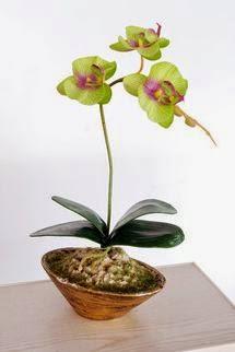 Flores y Plantas de Imitación, Regalo Dia de las Madres