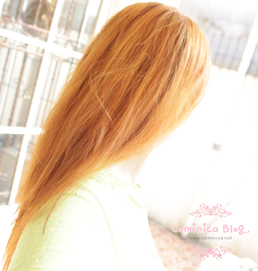 cominica blog palty hair bleach sparkling blonde quick review super bright looks like palty gold brown bleach but this color is tooo tooo orange for me lol my sis and my bro were laughing at me wtf nvjuhfo Choice Image