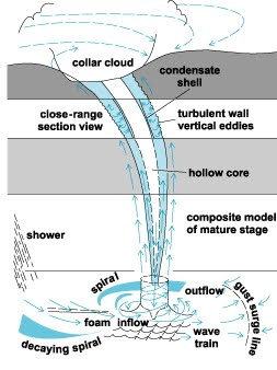 the main traits of waterspouts and whirlwinds Tornadic waterspouts are tornadoes that form over water, or move from land to  water they have the same characteristics as a land tornado they are  associated.