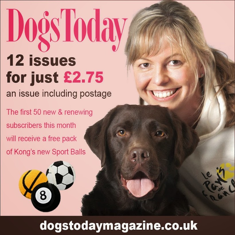 September 2014 edition of Dogs Today