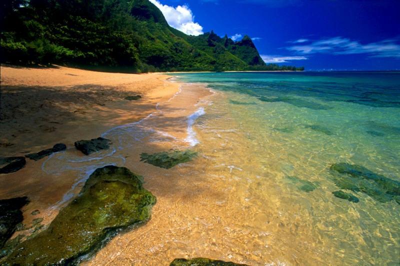 1985 hawaiian tropic contests