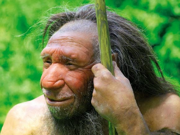 Neanderthal DNA...
