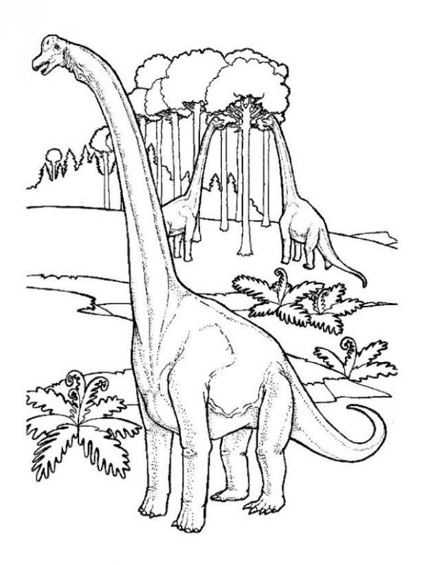 Extinct Animal of the Week: July 2011