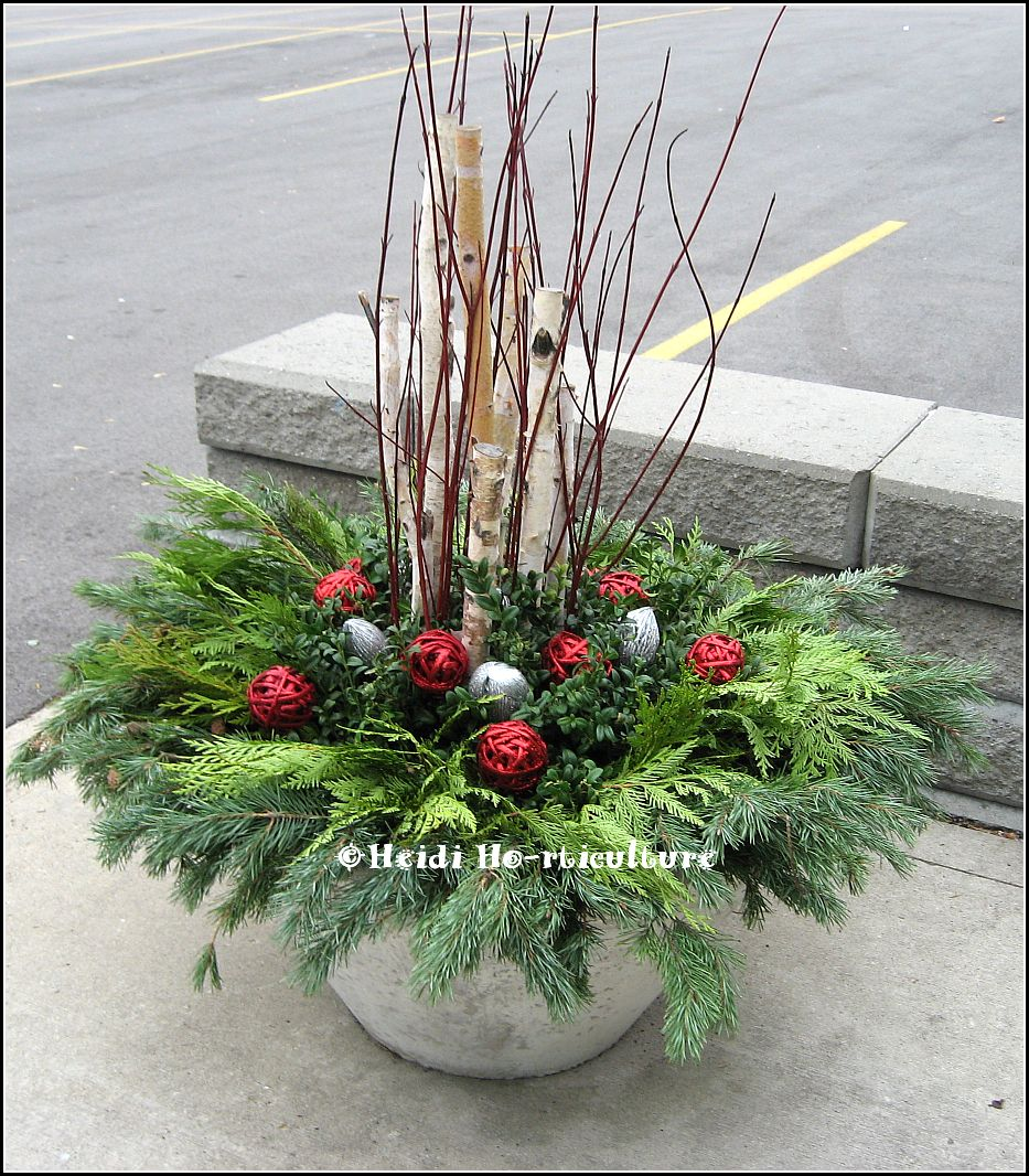 Decorating Ideas > Heidi Horticulture Outdoor Christmas Container  Large  ~ 085848_Christmas Decorating Ideas For Outdoor Planters