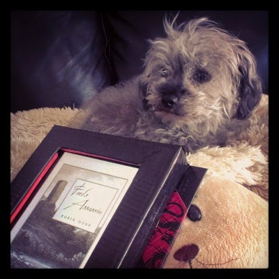 Murchie sitting on a fuzzy, sheep-shaped pillow just behind an e-reader with the title page of Fool's Assassin visible on its screen. The page shows a black and white etching of a tower on a hill by a river, with the title in a white box on the right hand side of the screen.